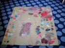 kolory-biedronki