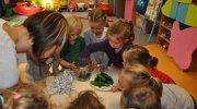 motylki-ogorki