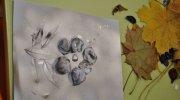 plastyka2014-motylki