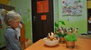 weronika2014-tygryski
