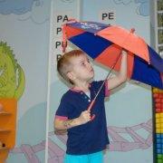 parasolki2015